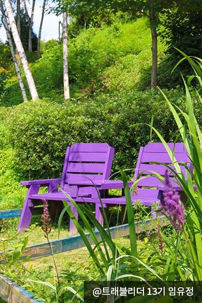 미술관 자작나무숲 정원에 있는 보라색 의자 두개 - @트레블러 13기 임유정