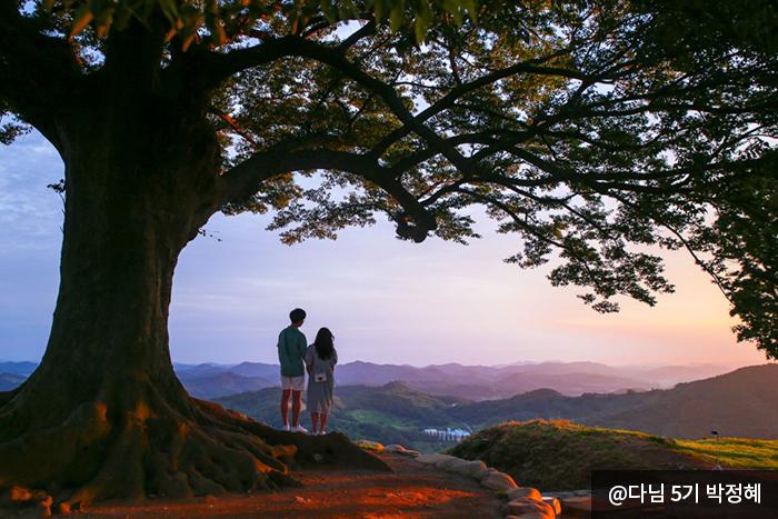 느티나무는 하트모양을 반으로 자른 모양 아래 커플 사진 @다님 5기 박정혜