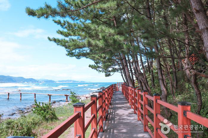 잘 정비된 탐방로 - 한국관광공사