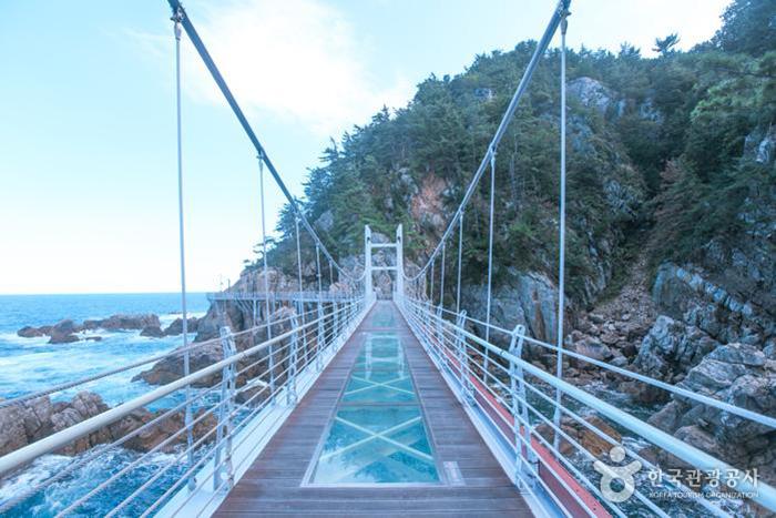 투명한 유리 아래로 바다가 넘실거린다 - 한국관광공사