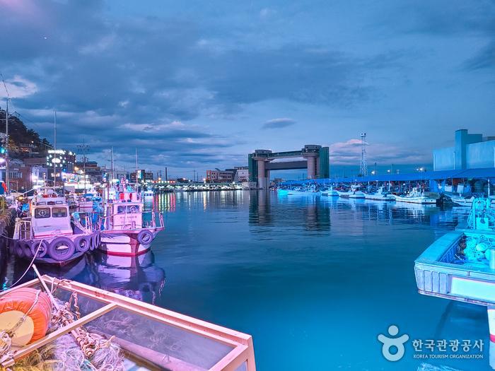 삼척항의 밤 - 한국관광공사
