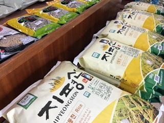 인문열차에서 '쌀밥'을 논하다