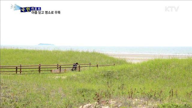'태안 해변길 100km' 힐링명소 '우뚝'