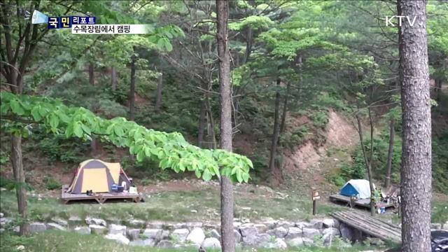 자연친화 수목장림에서 캠핑 즐겨요