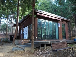 편백나무 숲서 유유자적 독서를~