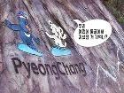 수호랑, 반다비 가이드의 '평창올림픽 투어'