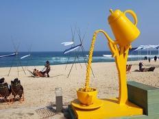 봄 바다, 그리고 커피 한 잔