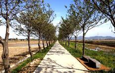 5월 걷기여행길 7선, 싱그러운 봄 날씨와 어울리는 길