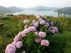 올 여름휴가는 특별한 매력있는 섬으로 떠나요