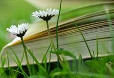 7월부터 도서·공연비 최대 100만 원까지 소득공제